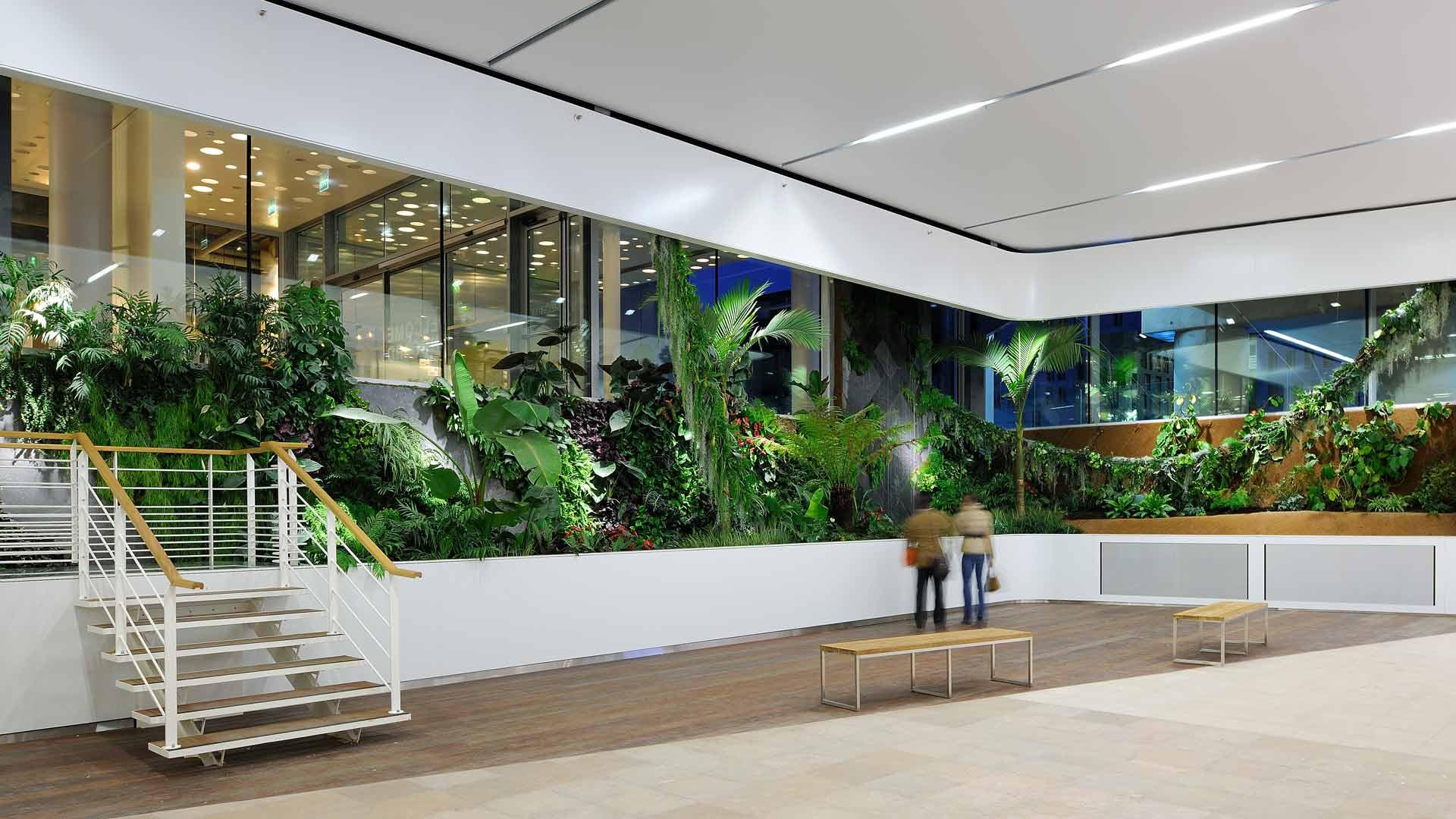 Jungle tropical Alexis tricoire