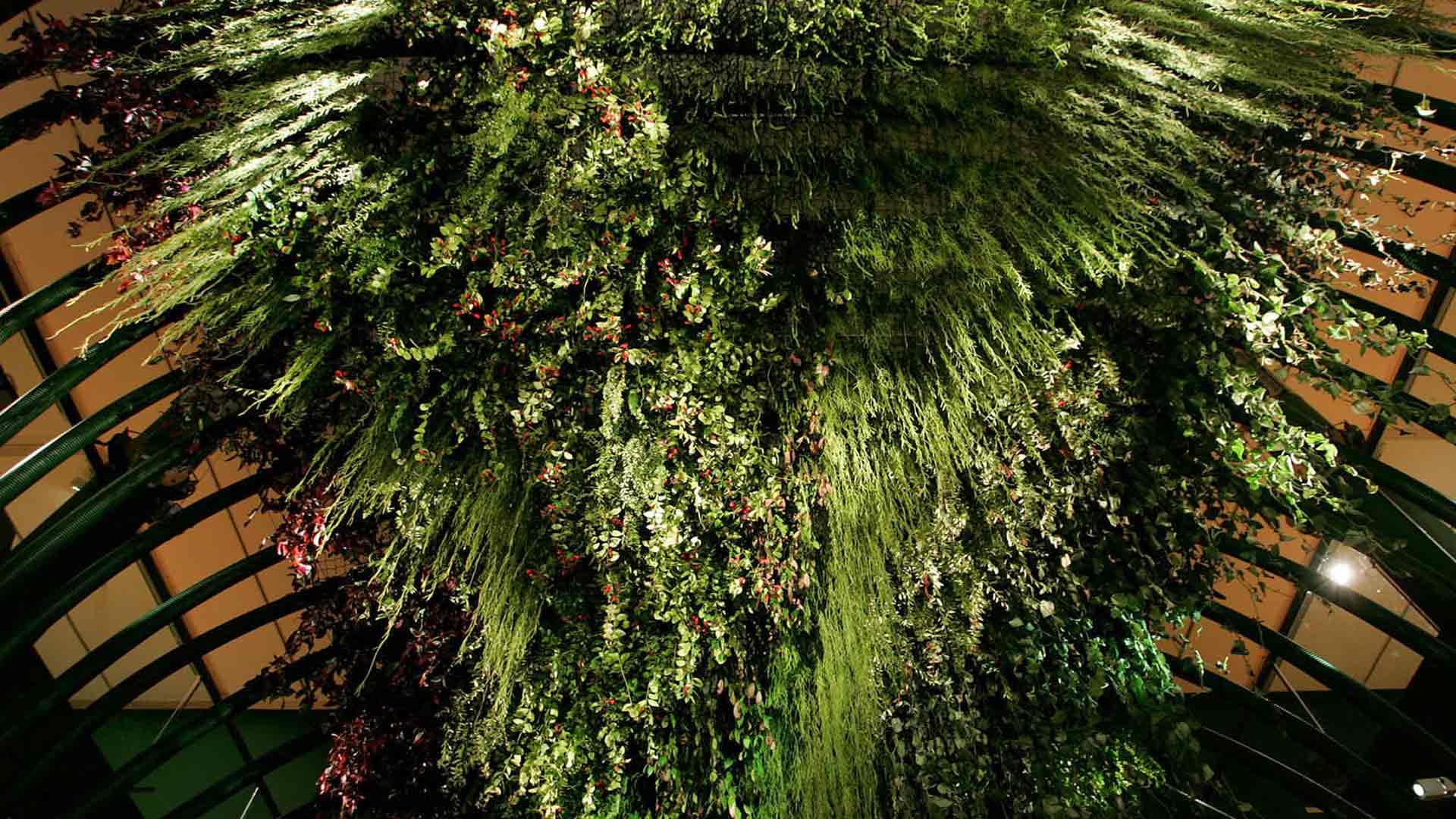 Folies Végétales Alexis tricoire