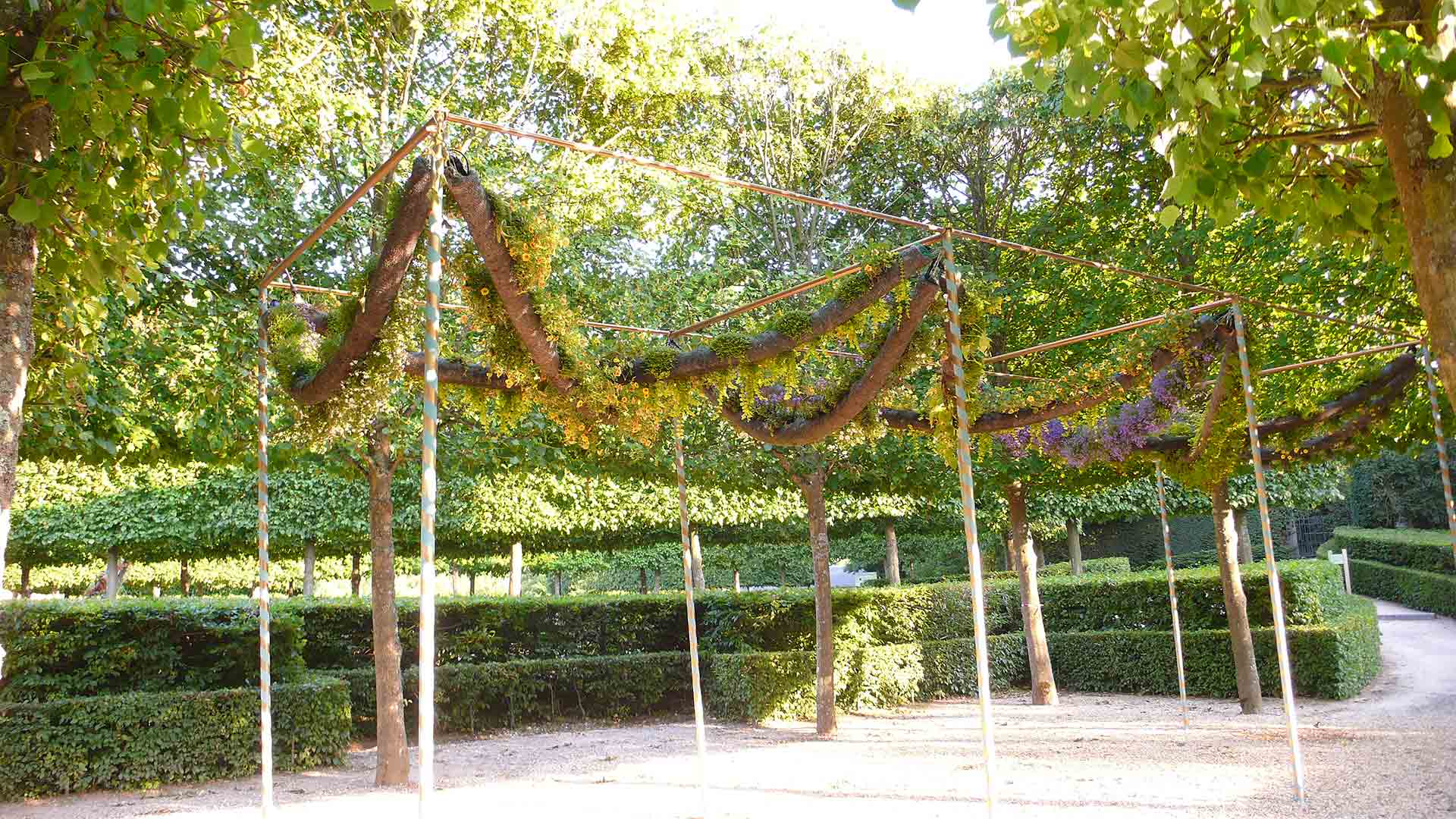 04 Alexis tricoire versailles galeries vegetales